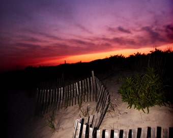The Hampton Dunes