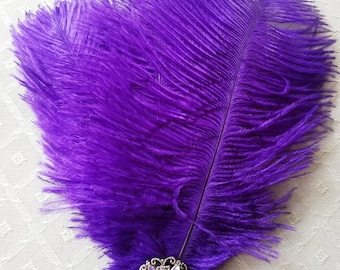 Ostrich Feather & Crystal Hat Pin