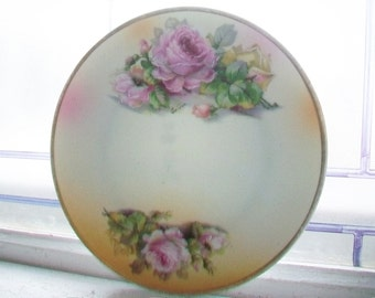 Vintage Collector Plate Hand Painted Flowers Bavaria H & Co. BT Co.