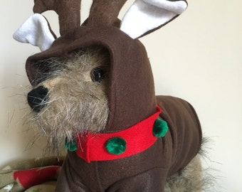 Reindeer costume by FiercePetFashion