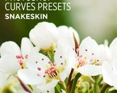 Photoshop Curves Preset - Snakeskin - Use as PS Resource, Color Pop for Photo Editing & More