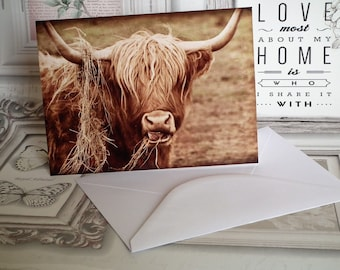 Highland Cow Birthday / Blank Greetings Card from Photo Art - Made in the UK