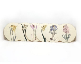 Tags, Gift Tags, Floral Gift Tags, Botanical Gift Tags, Round Gift Tags, Flower Tags, Floral Tags, Circle Tags, 3 Inch Circle Tags
