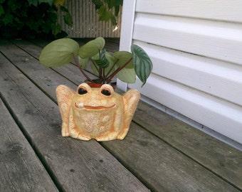 Ceramic Vibrant Orange & Yellow Garden Frog Pot- hand painted, indoor or outdoor, lawn or garden