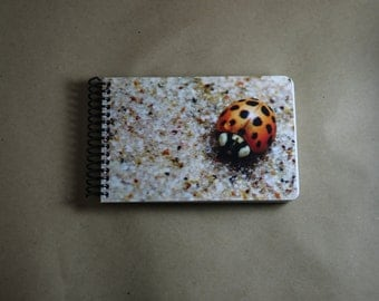 Small Ladybug Journal