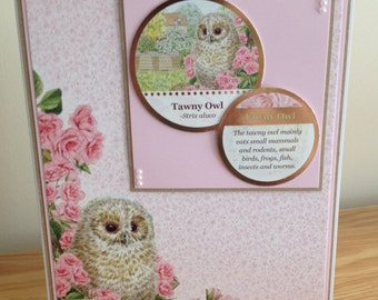 Birthday Card.  Thank You Card.  Get Well Card.  Pretty Ladies or Girls Tawny Owl Card With Gold Foiling.  Perfect For BIrd Lovers.