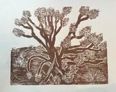 Joshua Tree - Brown