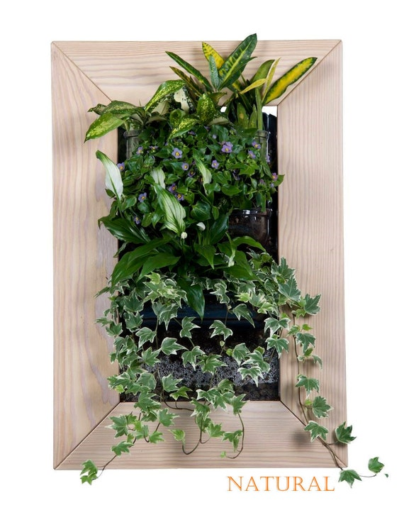 Biovertigo Wood Vertical Garden Kit