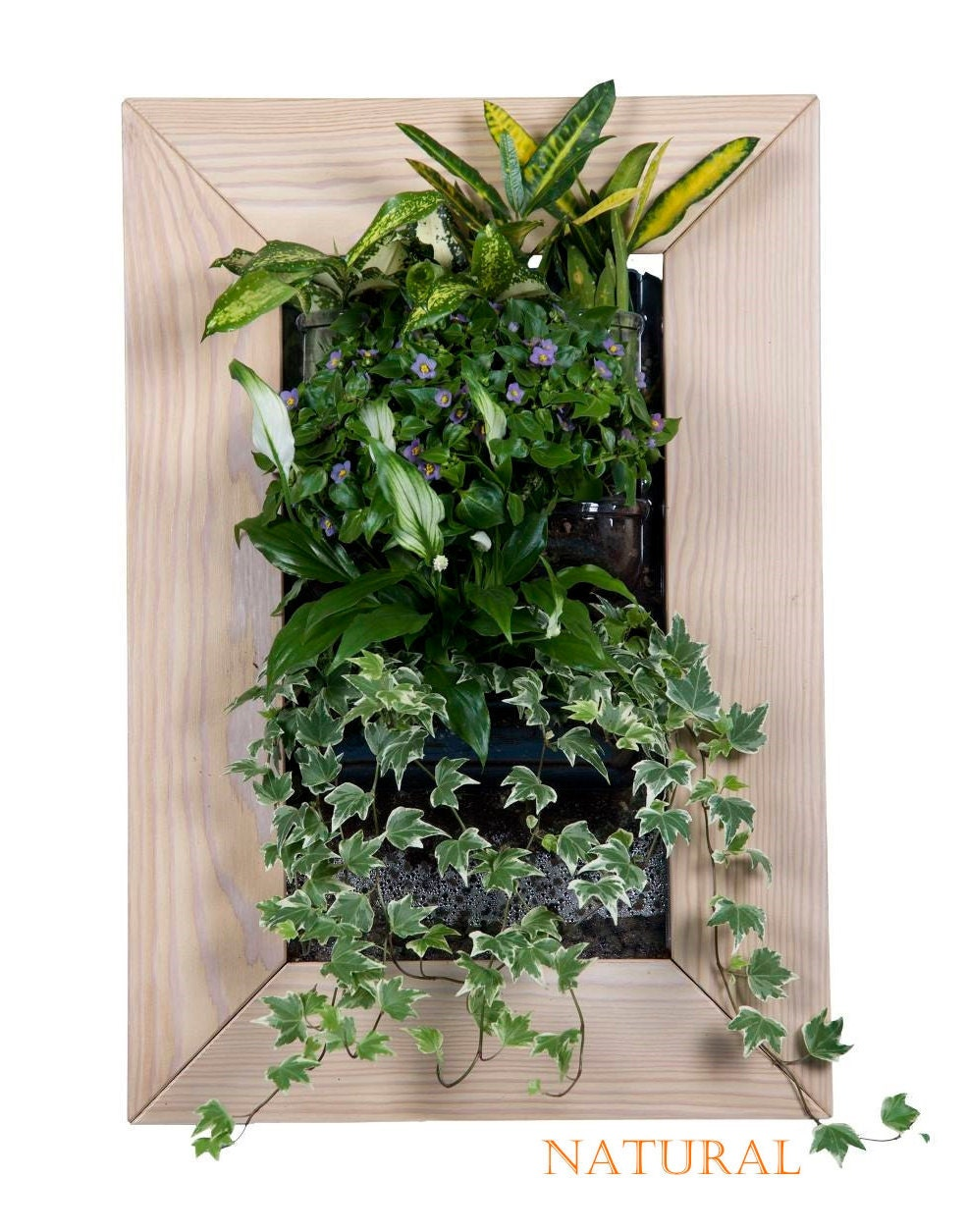 biovertigo wood vertical garden kit. Black Bedroom Furniture Sets. Home Design Ideas
