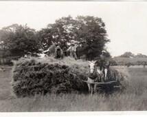 Rural Americana ~ Vintage Snapshot Photo ~ Farm Life ~ Threshing Hay