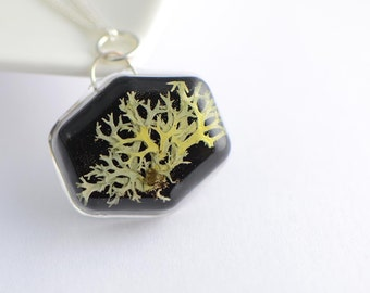 Pagana botánico collar real prensado Liquen musgo joyería prensado minimalista bosques de hielo resina negro verde elegante joyería druidas