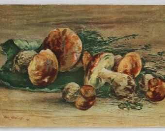 "Illustrator Yakovlev Vintage Soviet Postcard ""Mushrooms"" - 1956. Sovetskiy hudozhnik. Porcini, Brown, Mycology"
