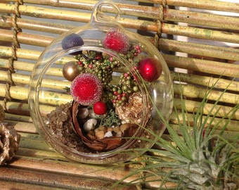 Air Plant Terrarium Kit,Globe Glass Vase Terrarium,Holiday Terrarium,Christmas Decoration, Gift, Mini XTree, Air Plant,Christmas Gift