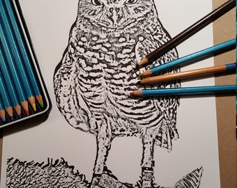 Owl Always Love to Color! Adult Printable Coloing Page PDF