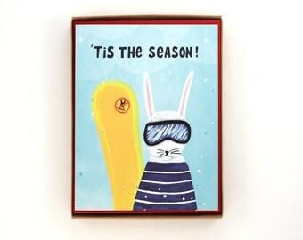 Box of 8 Snow Bunny Holiday Cards - 'Tis The Season! - funny animal greeting card / HLY-BUNNY-BOX