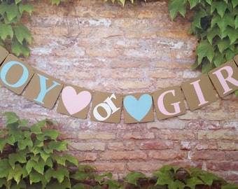 PETITE Pink or Blue We Love You PETITE Gender Reveal Banner