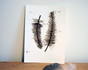 Post card black feathers, nature inspiration on paper