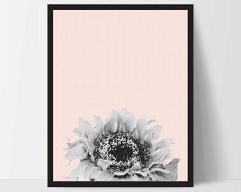 Pink Sunflower, Wall Art, Artwork, Home Decor, Modern Print, Print Art, Nature Art, Living Room, Digital Print, 12x16