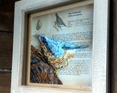 Bird framed print, Nuthatch picture, Aged wooden framed print, woodland creature,  bird photographic print, rustic picture frame,