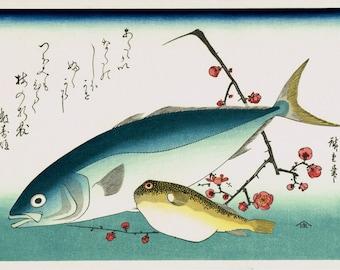 "Japanese Ukiyoe, Woodblock print, antique, Hiroshige, ""Yellowtail, Blowfish, and Plum Blossoms"""