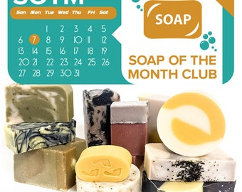 Handmade soap - FREE Shipping - Soap of the Month Club Soap Boxes
