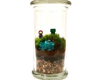 Super Mario // Moss Terrarium