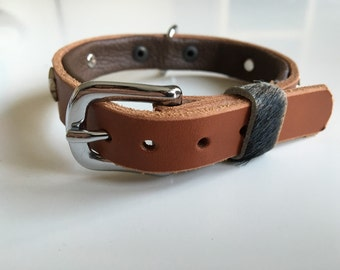 Leather dog collar for small dog