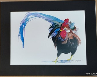 Rooster, 11x14 matted print by June Jurcak