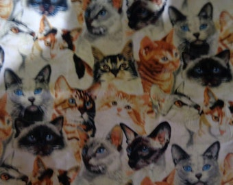 3/4 plus yard cotton cat print