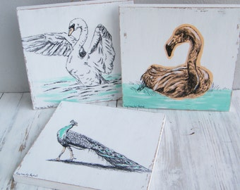 Print on wood, Natural Decor, Set Of 3 Wall Signs, Bird Print, Flamingo, Swan, Peacock Illustration, Dorm Decor, Home Decor, Rustic Wood