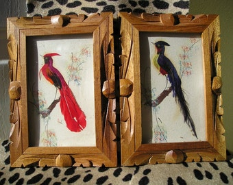 Vintage Feathercraft  Mexican Bird Picture Folk Art Pair Pictures