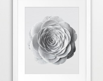 Flower Print, Flower Wall Decor, Rose Photo, Black White Photography, Floral Art, Nature, White Flower Print, Modern Wall Art, Printable Art