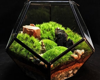 Large Geometric Landscape Terrarium // Moss Terrarium // Indoor Plants // Industrial Decor