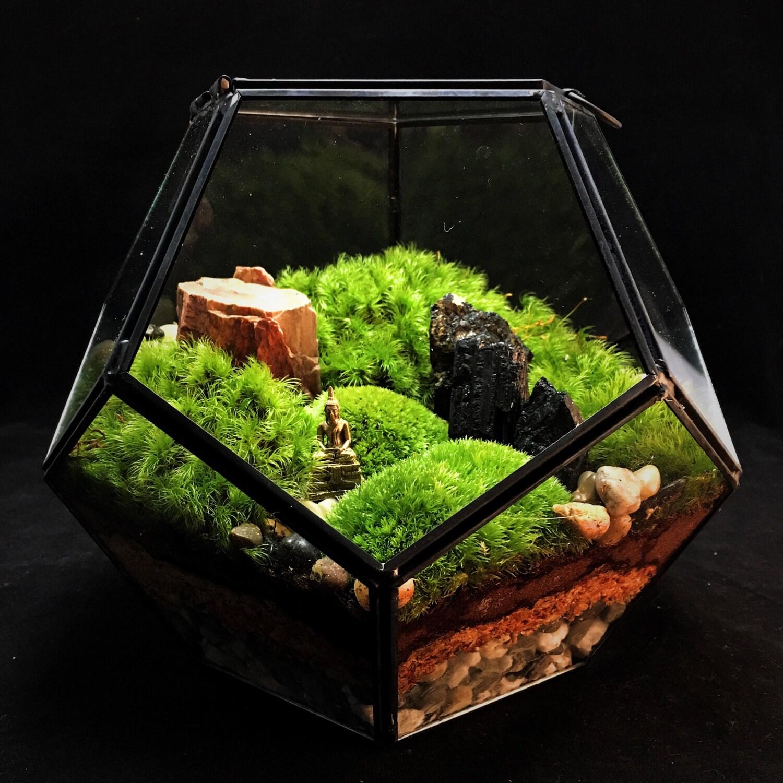 Large Geometric Landscape Terrarium Moss Terrarium Indoor