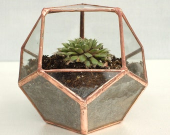 Petite Geometric Glass Terrarium ‹› Copper ‹› Lead-free and Eco-friendly ‹› Stained Glass ‹› Indoor Garden ‹›