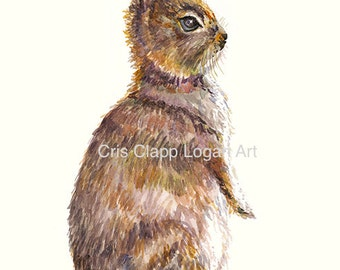 Baby Bunny Original Watercolor Nursery Rabbit Art Painting by Cris Clapp Logan