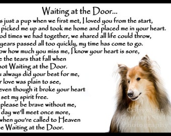 Shih Tzu Dog Pet Loss Memorial Bereavement Fridge Magnet Gift