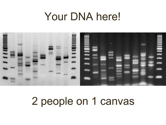 Custom dna canvas print metal genetics wall art by daredna for Personalized dna art