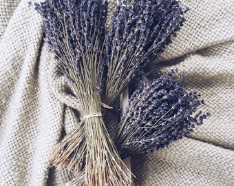 250+ Stems Lavender, One Bunch, Preserved, Dry English, Dry Lavender, Wedding, Home Decor Bunch Bouquet Dried Lavender Flowers Floral