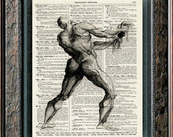 HUMAN Muscles Anatomy Body Form Printed on Antique Dictionary Encyclopedia or Vintage Music Book Page