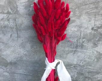 "Red Lagurus Flower Bush, Dried Flowers,  Wedding Flowers,  Naturally Dried- 24"" Tall"