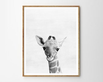 Baby Giraffe, Nursery, Animal, Kids room, Modern art, Wall decor, Digital art, Printable, Digital poster Instant Download 8x10, 11x14, 16x20