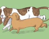 DOGS card : Long Dogs - Dachshund and Basset hound
