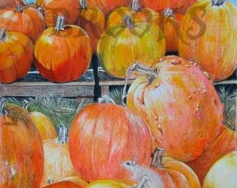 Diversity: Becky's Pumpkins
