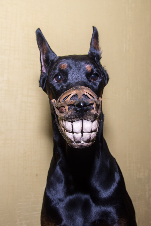 Funny Smiling Muzzle For Dog Doberman Pit Bull German