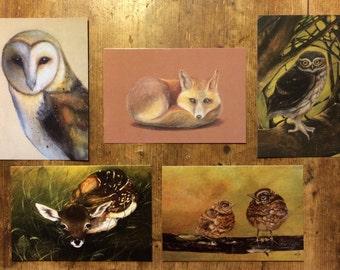 Set Postcards Woodland