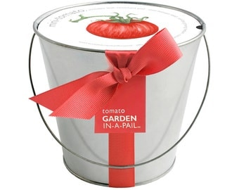 Tomato Mini Pail – Self Contained Grow Kit – Eco Friendly – Hostess Gift – Party Favors – Christmas – Kitchen Herb - Indoor Garden