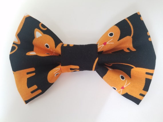 Fluff Size Orange Cat Bow for Cat or Small Dog Collars, Matching Velcro Collar, 100% Sales Goes to Feeding Feral Cats