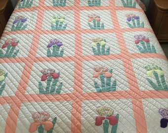 Hand quilted, hand appliqued, queen size, cotton quilt.