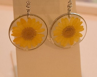 Yellow Flower Earrings Daisies Real Flower Earrings Flower Dangle Earrings Nature Jewelry Botanical Jewelry Gifts For Wife Resin Earrings